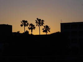 Silhouette by ThePraiodanish