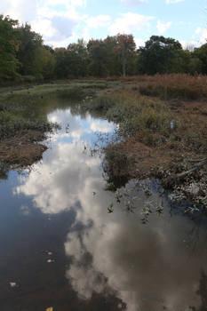 Marsh Outward Cloud Reflection