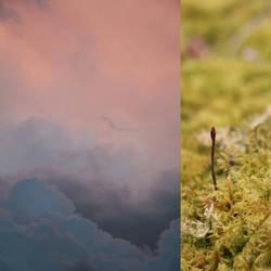 Moss Seas, Cloudy Lands