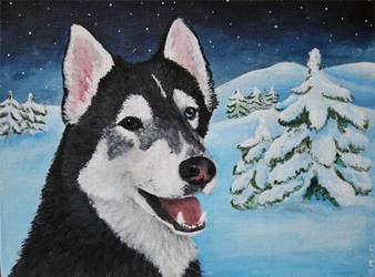 Commission: Husky by Sefja