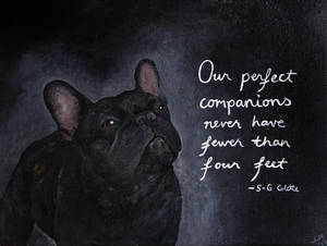 Our perfect companions