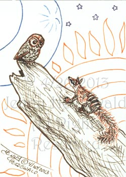 The Owl and the Numbat by celticwren