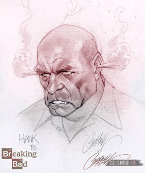 Breaking Bad's Hank angry!