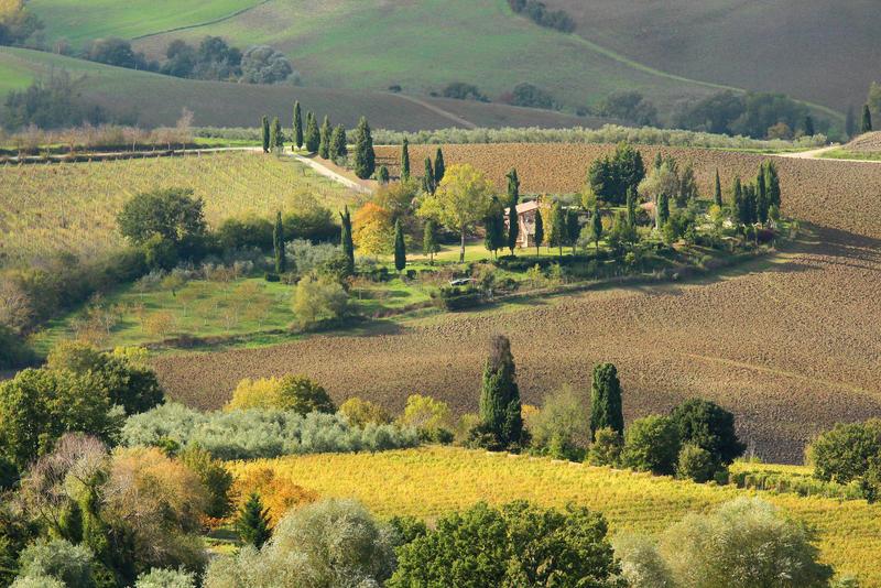 Tuscan fields by stefeli-reloaded