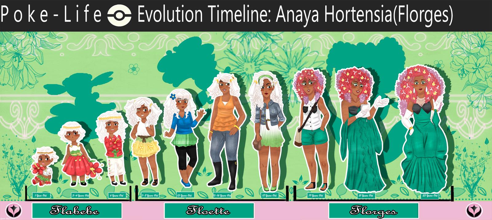 [PL]Florges Evolution Timeline by Spirit-Okami