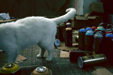 white cat by Cinziula