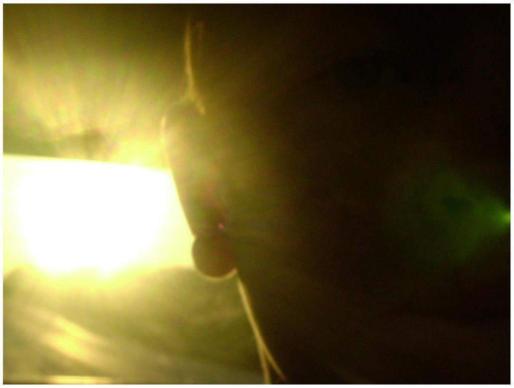 Sun Fun Car Light by be-yoself