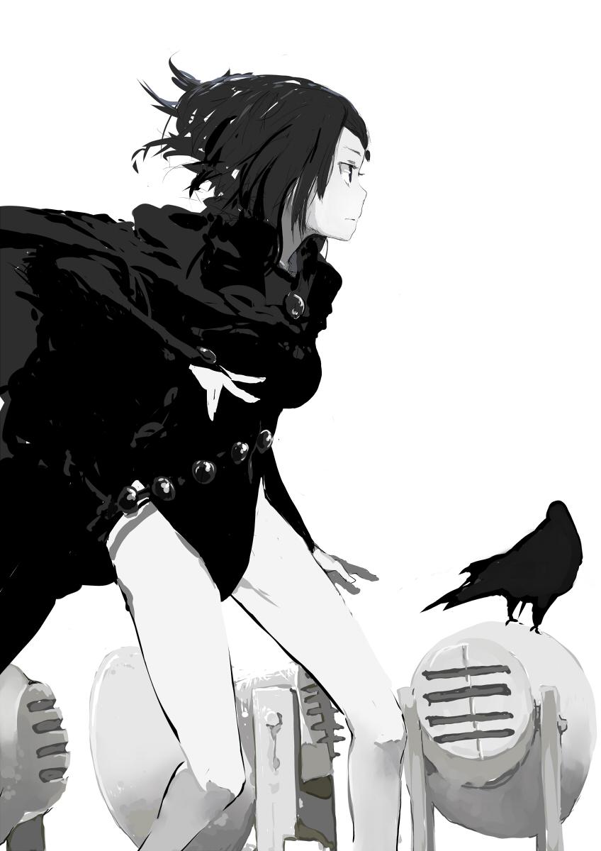 Raven by kalkulation