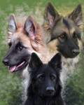 Great Shepherds