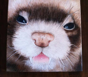 An oil painting of my ferret Demi by Rominique