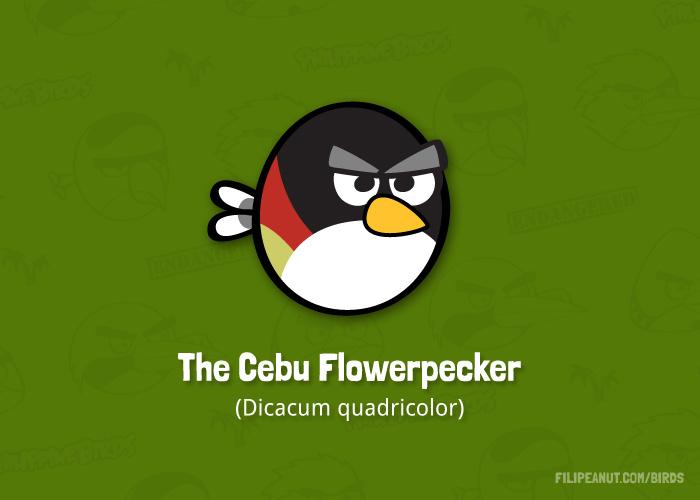 The Cebu Flowerpecker by Filipeanuts