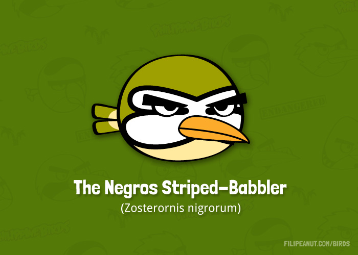 The Negros Striped-babbler by Filipeanuts