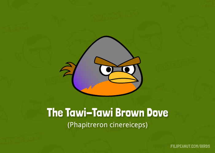 The Tawi-Tawi Brown Dove by Filipeanuts