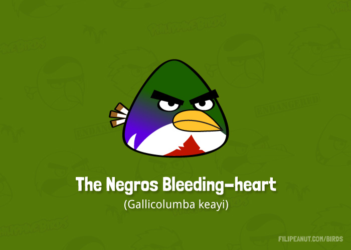 The Negros Bleeding-heart by Filipeanuts