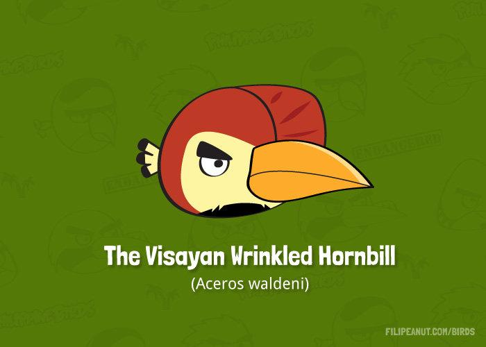 Visayan Wrinkled Hornbill by Filipeanuts