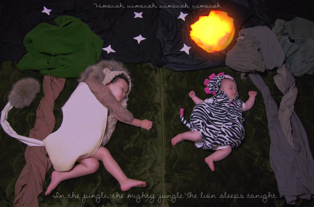 The Lion sleeps TonightFB by RAYN3R-4rt