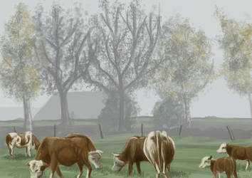 Cows in morning mist by Feuerlilie
