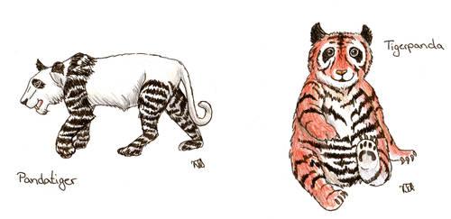 Pandatiger Tigerpanda
