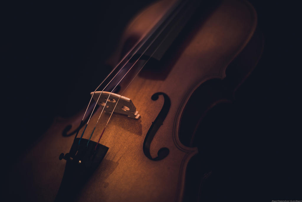 Violin by shtopor7