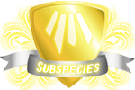 subspecies_cupcakecass_light_by_lisegathe-dao6ar9.png