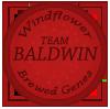 windflower_genesbaldwin_by_lisegathe-db7a7tl.png