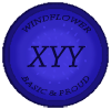 windflower_xyybasic_by_lisegathe-db7a7wa.png