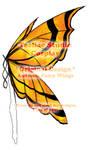 DESIGN: Autumn Fairy Wings
