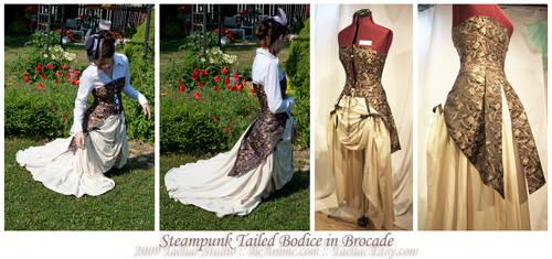 Steampunk Tailed Bodice v3