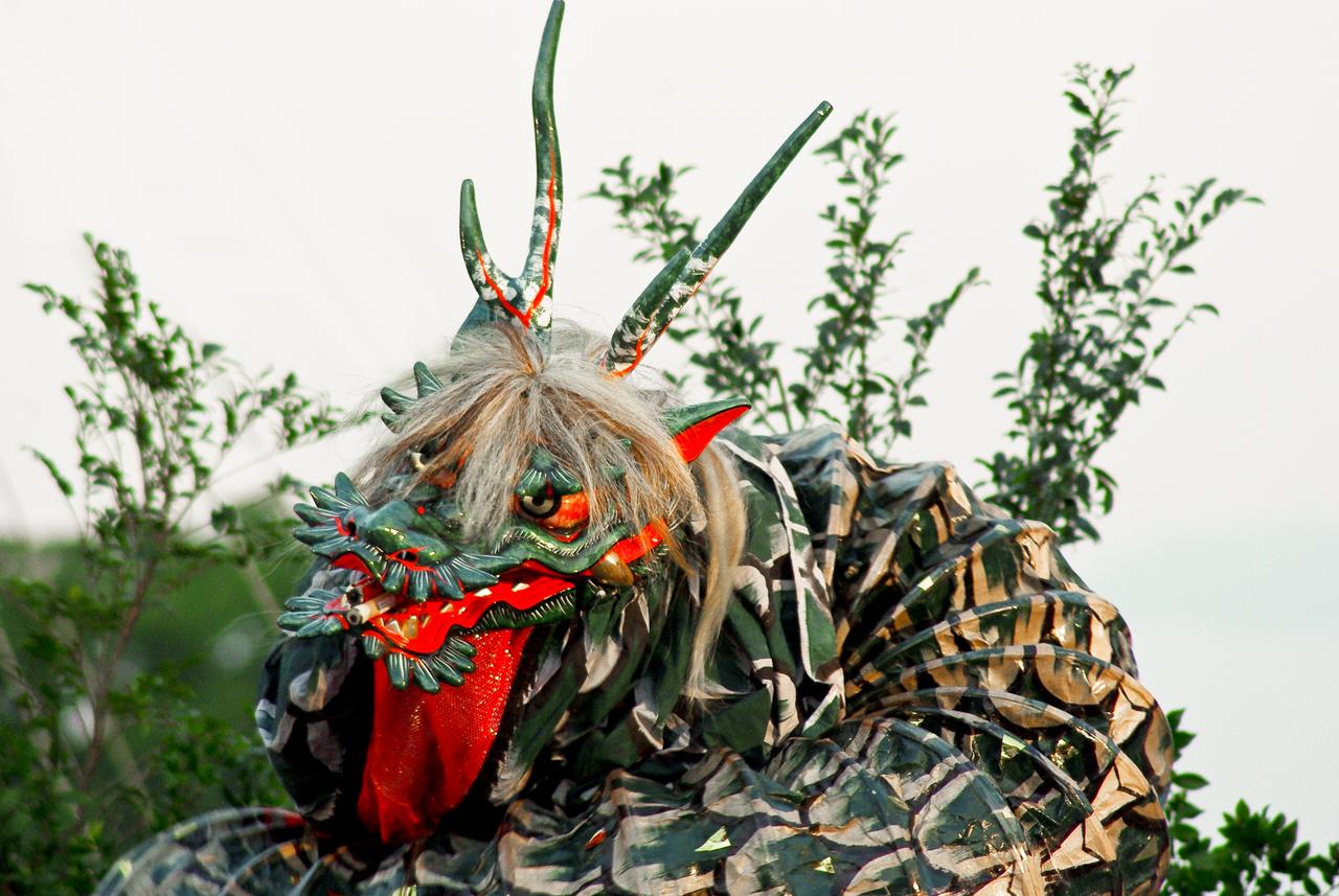 The Dragon Awakens (2) by taeliac