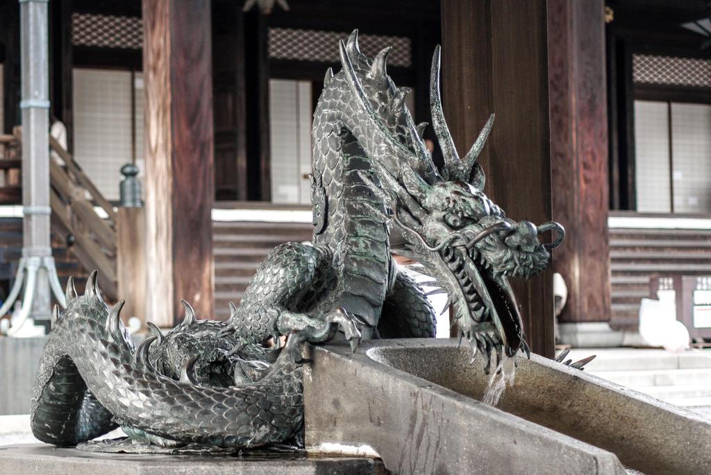 Dragons by taeliac