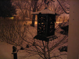 Winter Night by taeliac