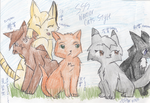 Apprentices SSS Warrior Cats Style