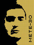 MeTe-30 LED Face by mete-30