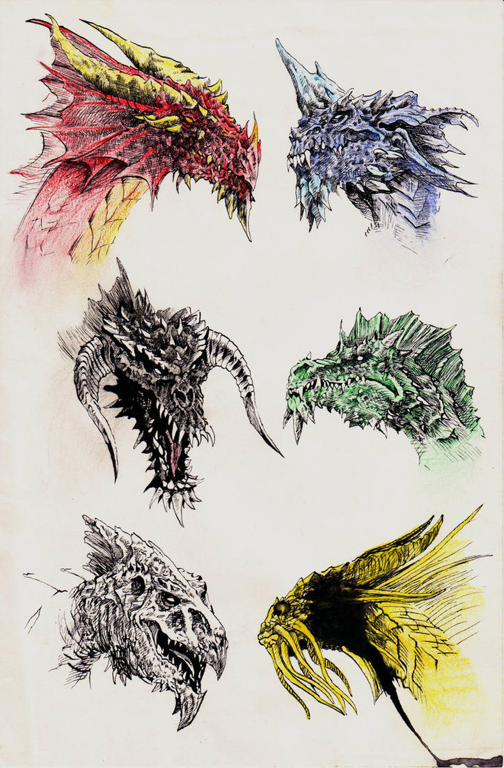 Dragons by yunuskocatepe