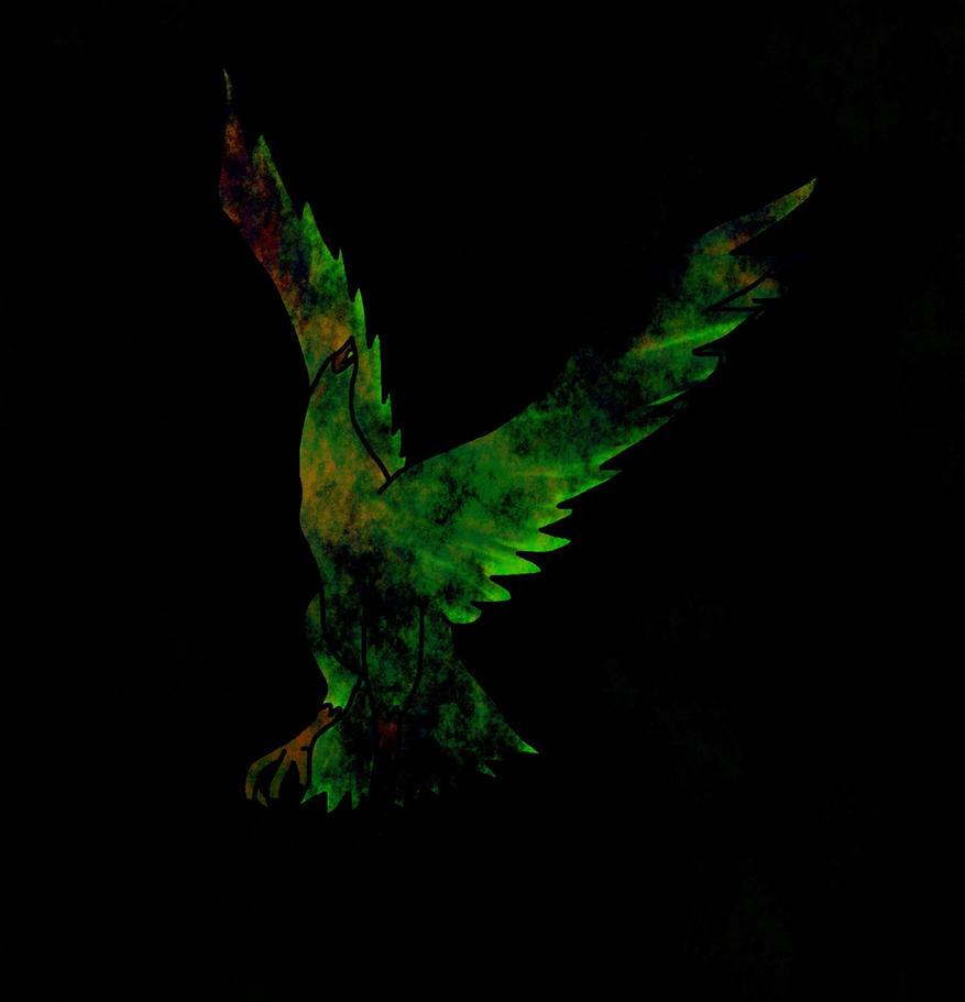 Bird 105_The Raven by sandw1chl0vr