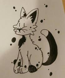 Kitty Cat~