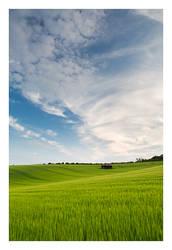 Dorset by Neutron2K