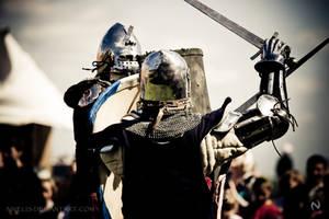 Medieval Total War by Nivelis