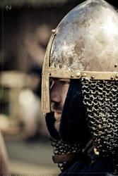 Viking Sagas 05 by Nivelis