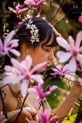 Magnolias 01 by Nivelis