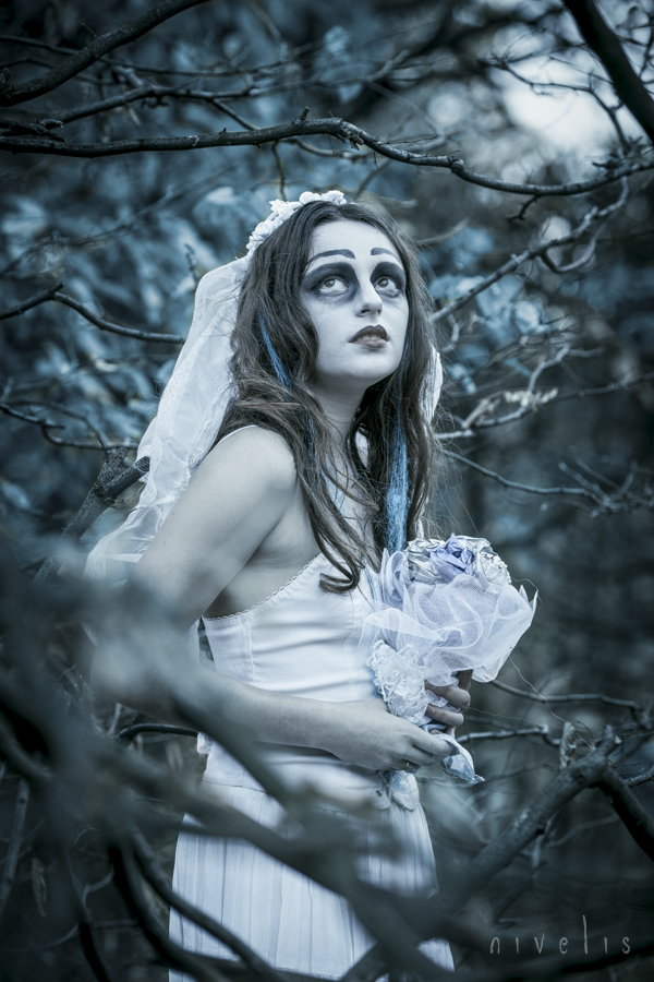 Corpse Bride by Nivelis