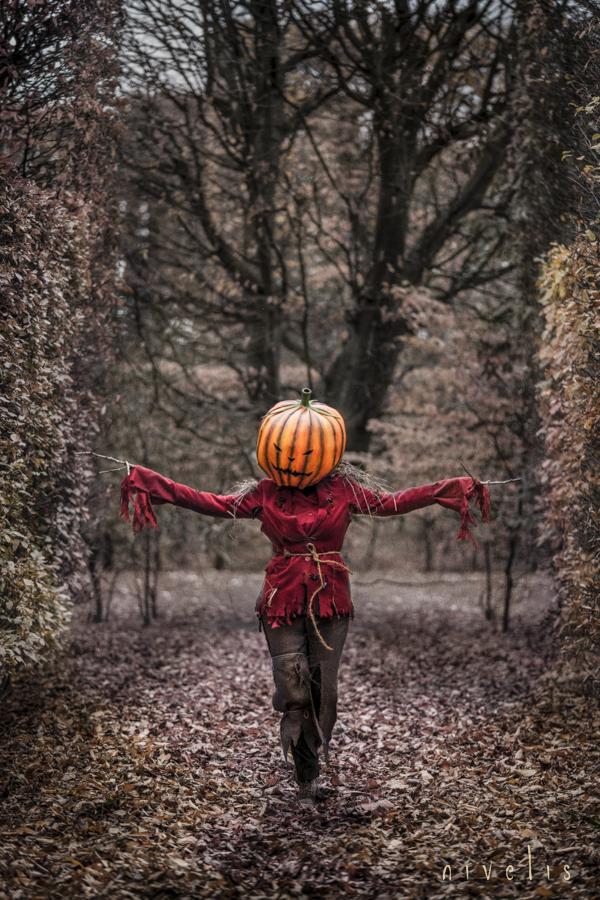 Pumpkin Monster by Nivelis