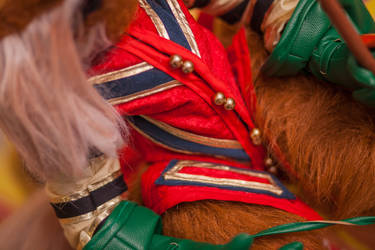 Sir Didymus 11of17 by NickDClements