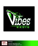 b-Vibes logo presentation 5