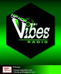 b-Vibes logo presentation 2