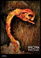 Spectra Psyclus - characters-Diplectomare