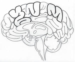Cross Brain
