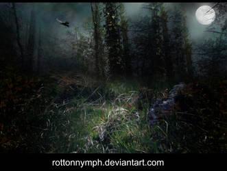 Moonlit Evening Stock by RottonNymph
