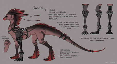 Dasek Reference by Neytirix