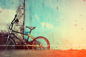 bicycle by ciombeenk